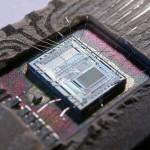 Old processor's die